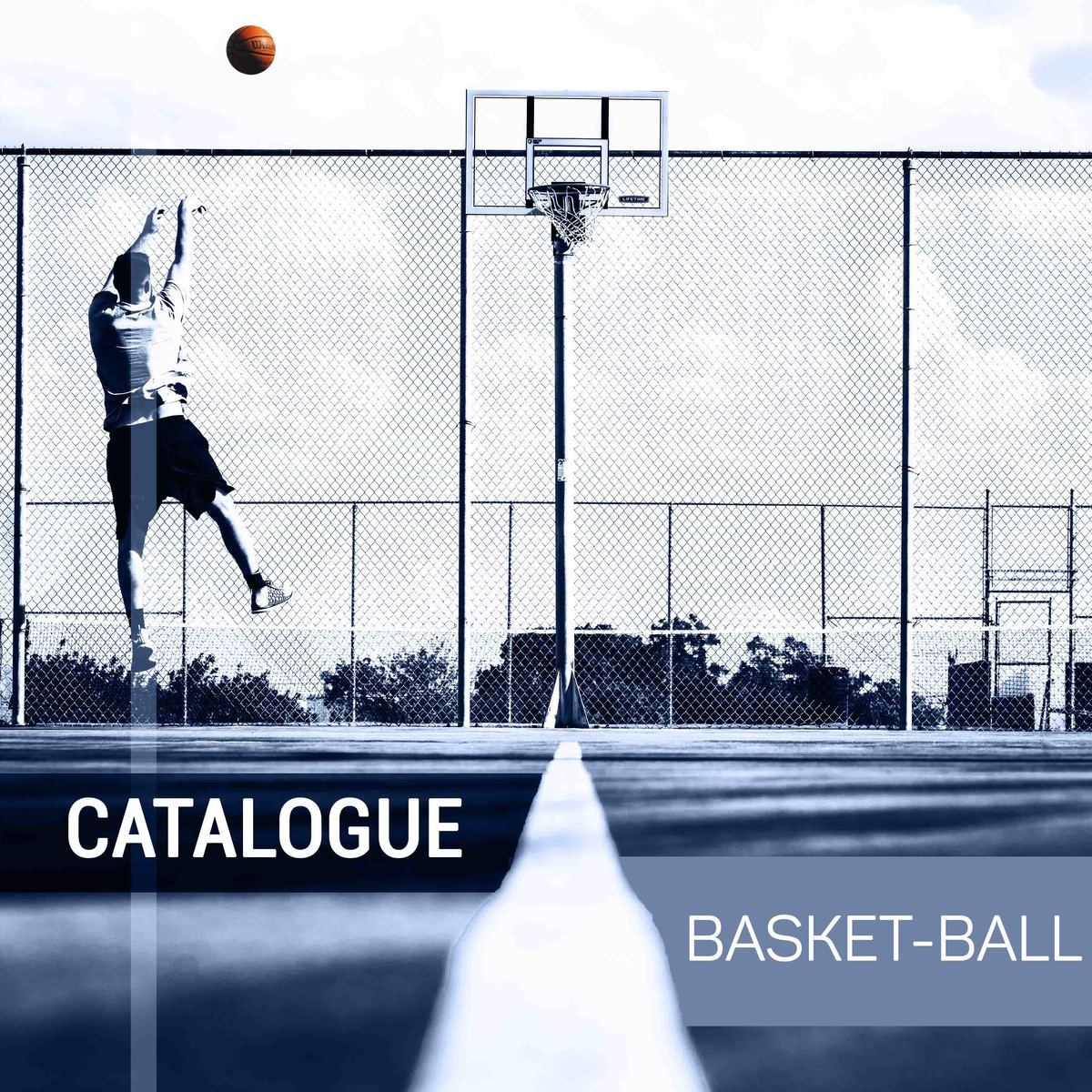 Image_catalogue-basketball-pre_sentation-1--0-0--760f0ae4-aaf0-4bbb-89a7-fcb995d54aa1