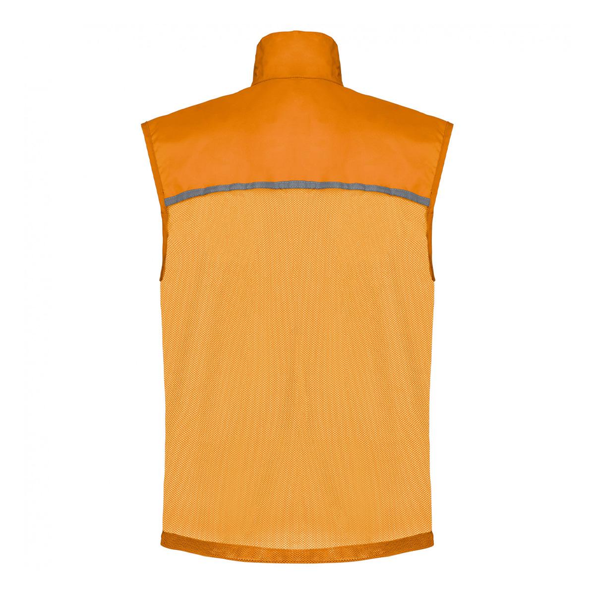 D05_pa234_orange--0-0--ca8c9f50-0a53-43a2-8ce8-7792442bc308