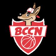 Image_28494-logo-bccn-rouge--0-0--6c17aa88-2535-4bcb-a9e4-b25a9780beb1