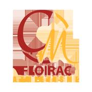 Image_24691-sl-cm-floirac--0-0--f18ae70b-413f-46a6-bf9e-e998a9fd6a15